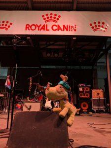 web-6-24-thank-you-royal-canin
