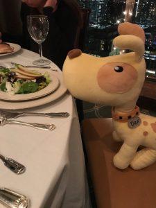 web-8-44-dex-was-enjoying-his-salad-at-the-royal-canon-young-vet-s-dinner-last-night-detectdex